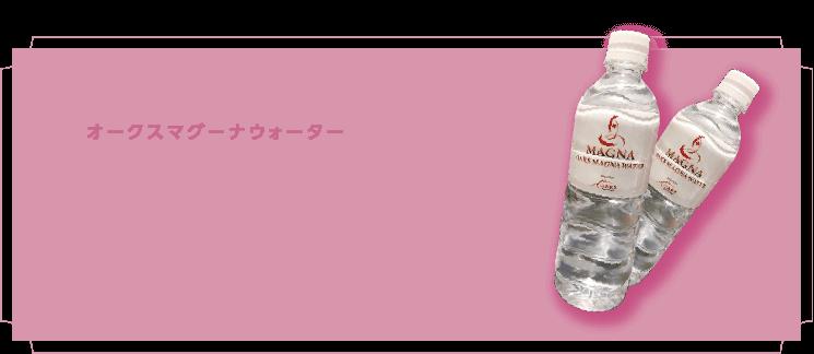 """店頭にて当社オリジナル""""オークスマグーナウォーター""""を販売しております。バナジウム・カリウム・亜鉛・マグネシウムなど様々なミネラルが含まれています。それらのミネラルが豊富に溶け込んで上質なミネラルウォーター。マグーナレッスンの際は是非ご飲用下さい。"""