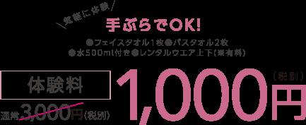 通常3,000円(税別)体験料1,000円(税別)